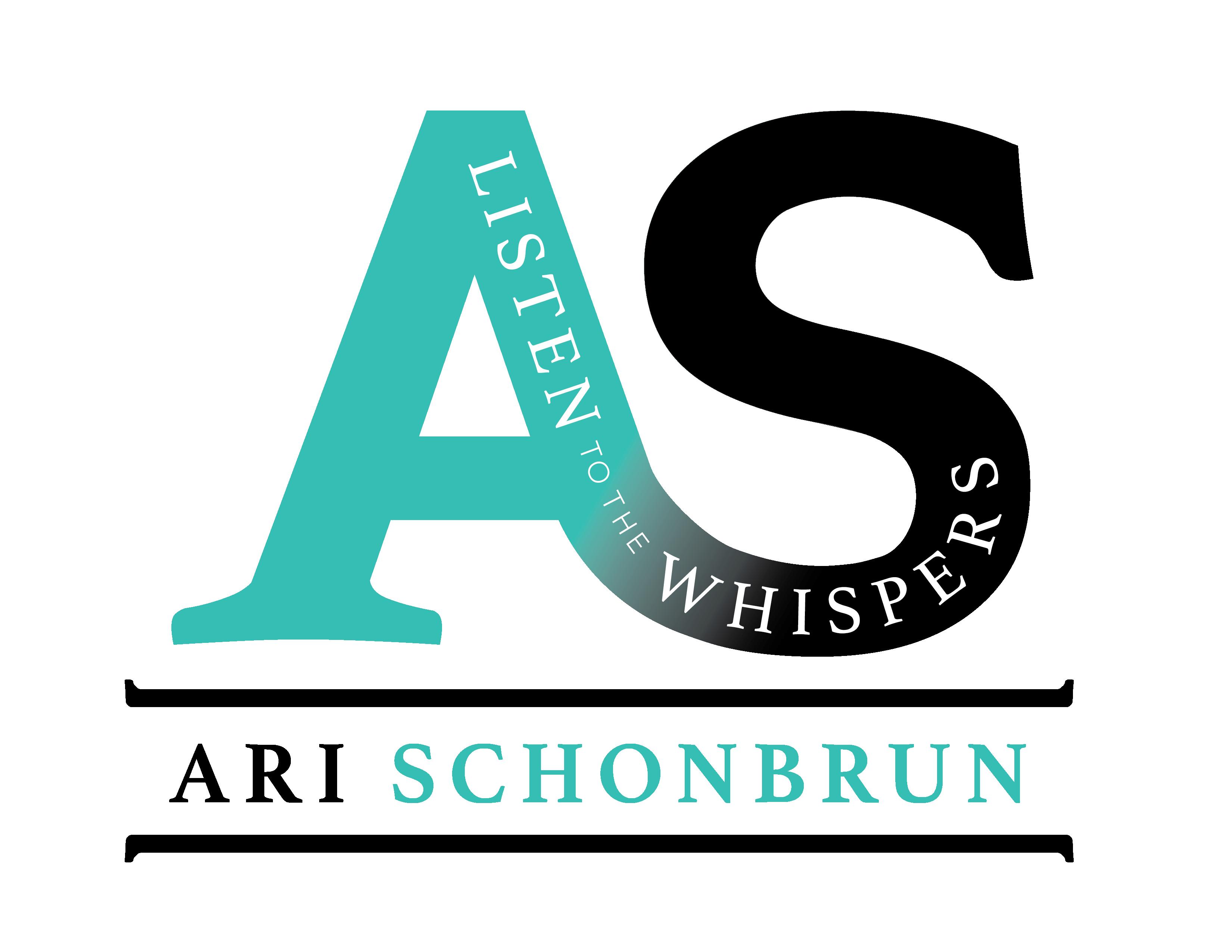 Ari Schonbrun Logo